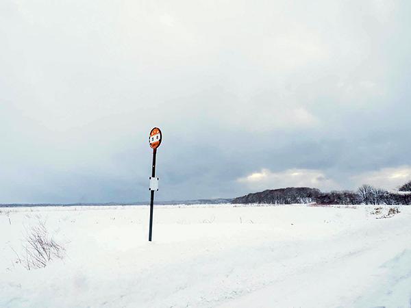 北海道の雪原
