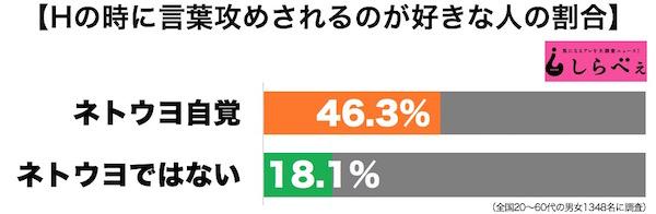 ネトウヨ3