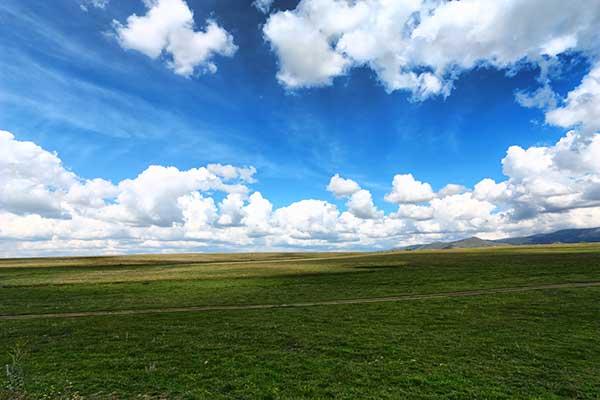 XPっぽい草原