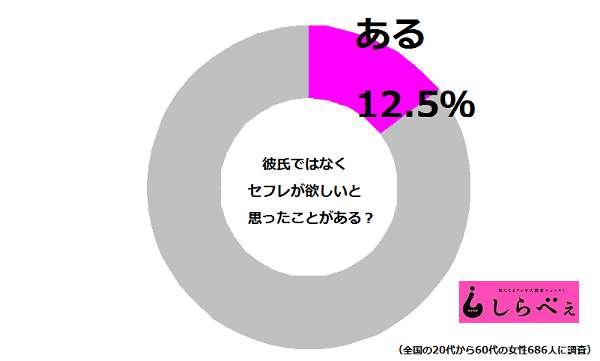 セフレ円グラフ2