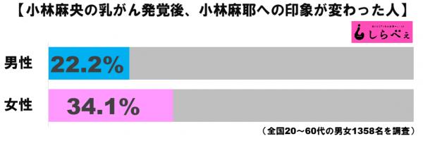 小林麻耶への印象グラフ1