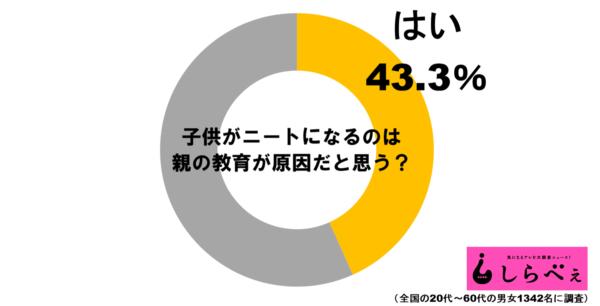 ニートグラフ1