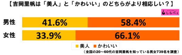 吉岡里帆グラフ1