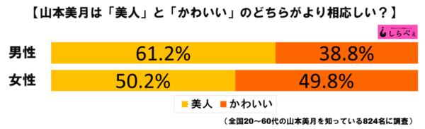 山本美月グラフ1