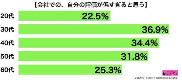 会社の評価グラフ