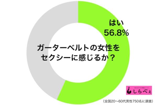 ガーターベルトグラフ1