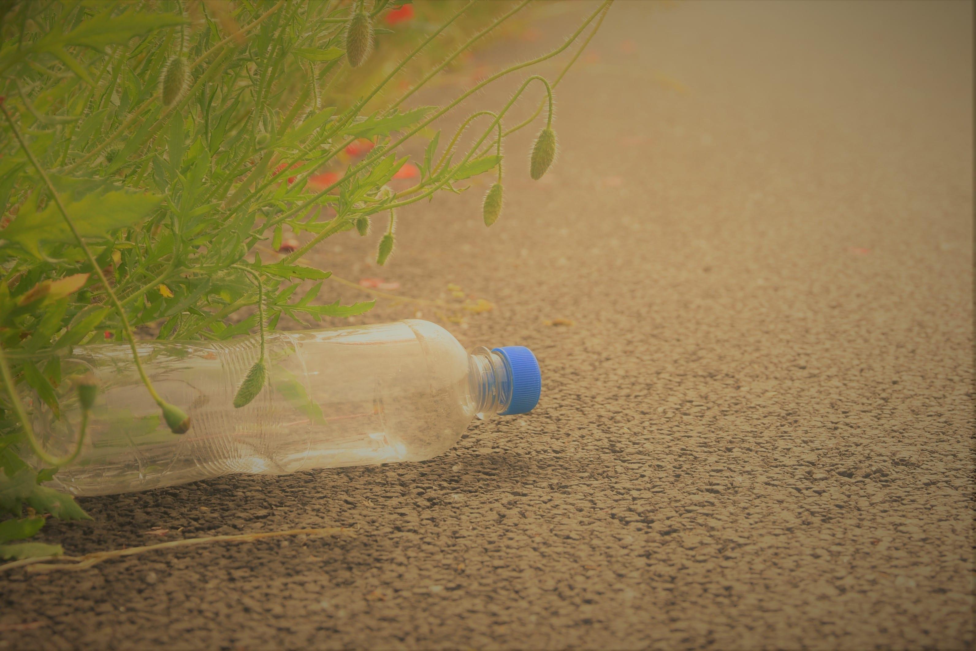 車道にペットボトル