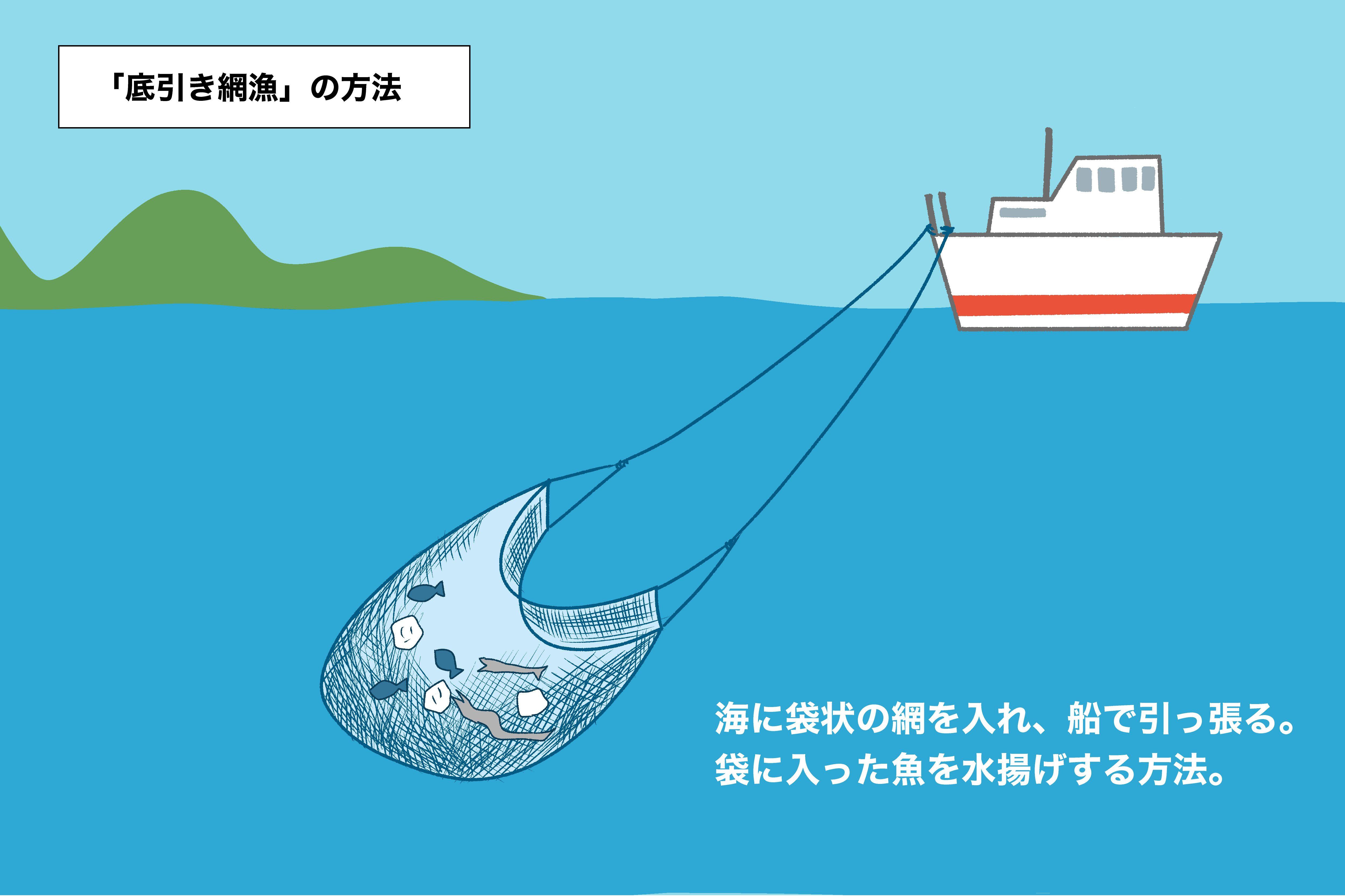 底引き網漁