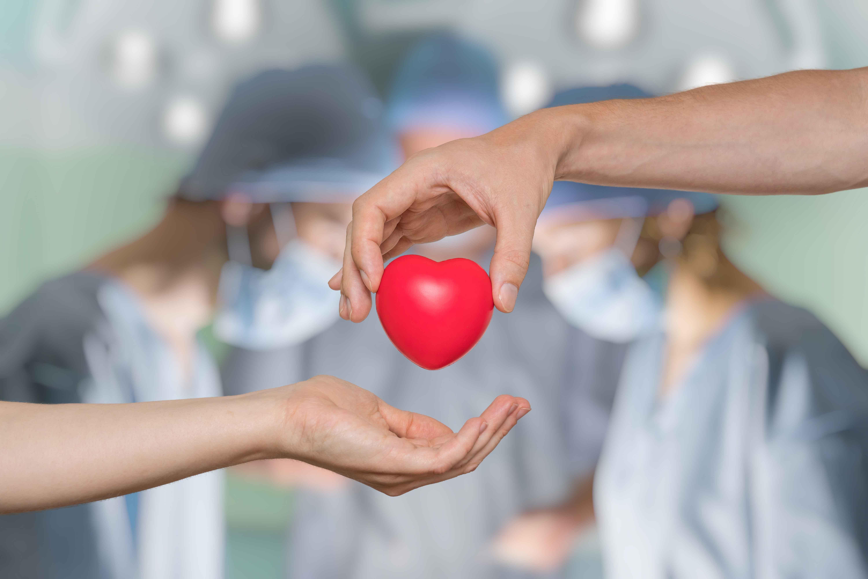 臓器移植イメージ