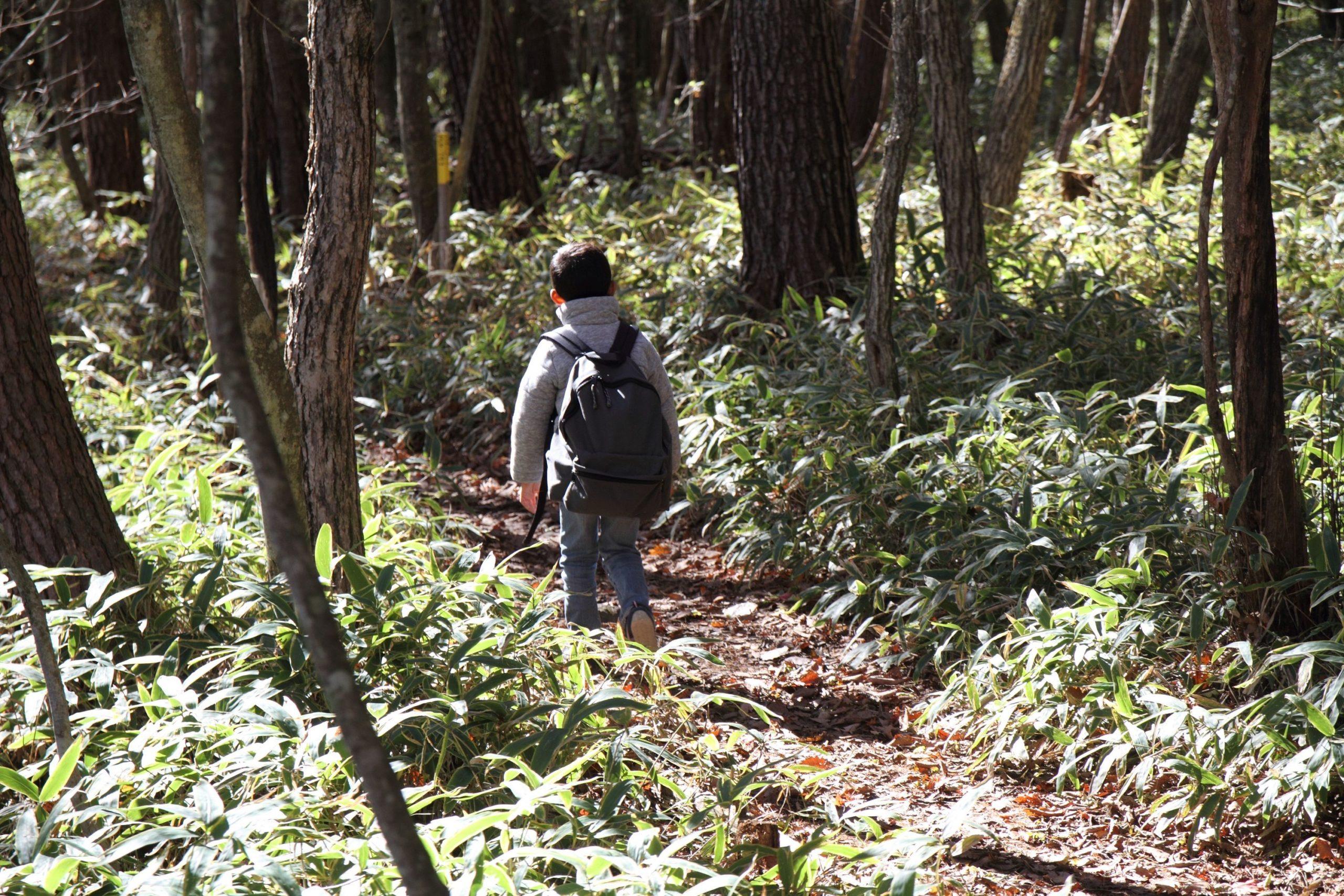 山道を歩く少年