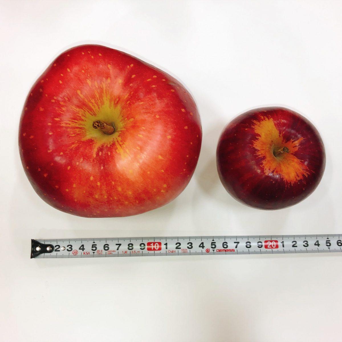 希少な青森県産りんご「世界一」