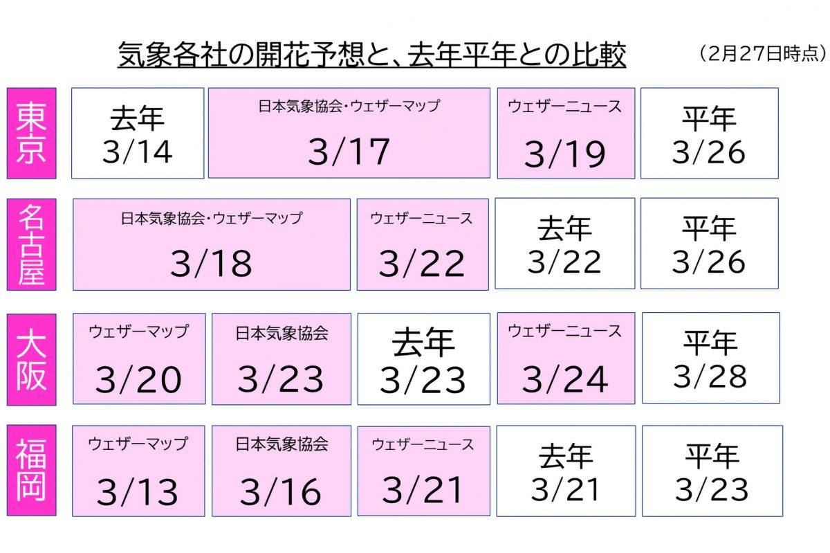 桜・開花予想
