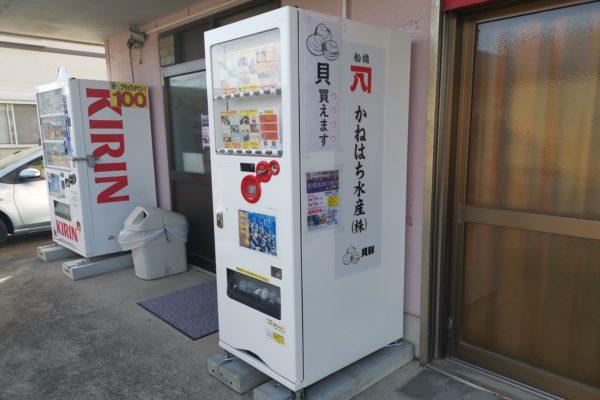 千葉県にまさかの『貝の自動販売機』発見 凄まじく美味しい貝が売られていた