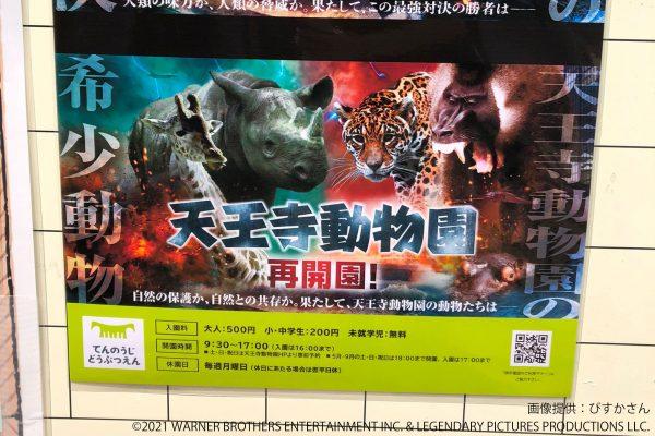 天王寺動物園ポスター