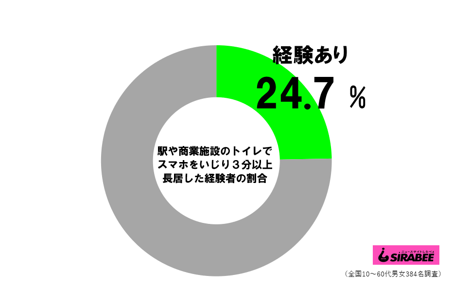 公共トイレでスマホ_円グラフ