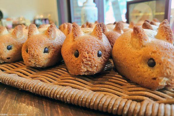 ウサギ焼き菓子