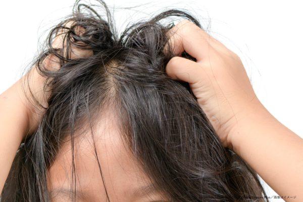 髪の毛・かきむしる・かゆい・少女